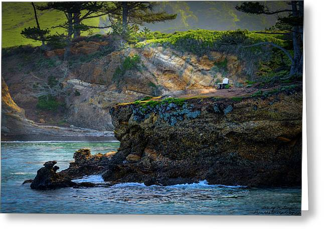 Point Lobos, Calif. A Missed Opportunity Greeting Card