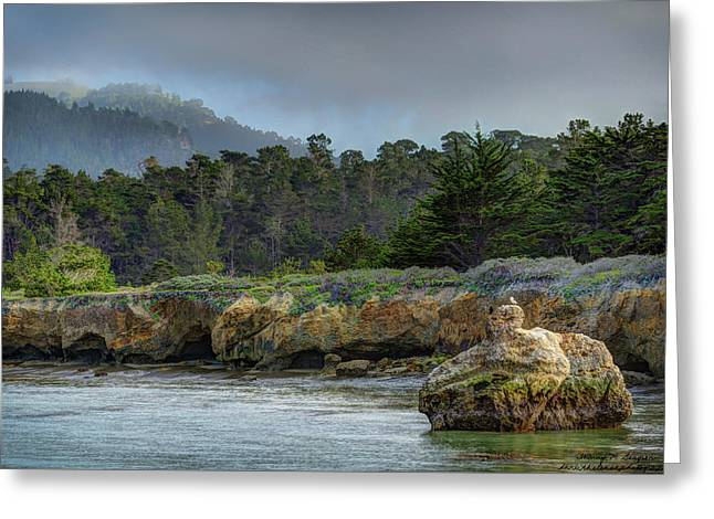 Point Lobos, Calif. Whaler's Cove Greeting Card