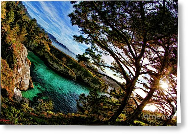 Point Lobos California Greeting Card by Blake Richards