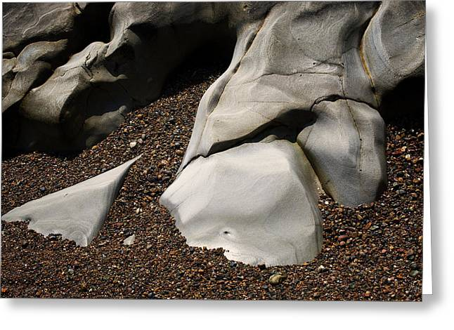 Point Lobos I Color Greeting Card by David Gordon
