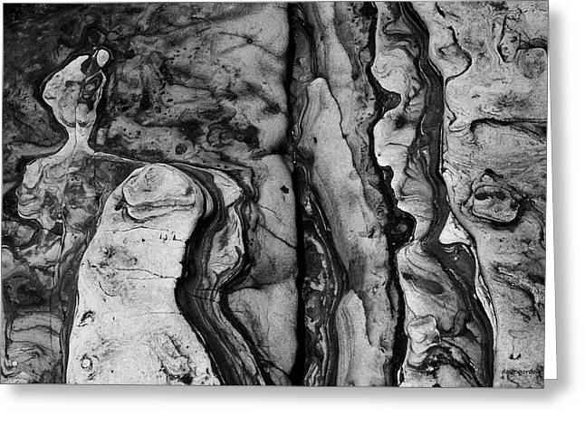 Point Lobos II Bw Greeting Card by David Gordon