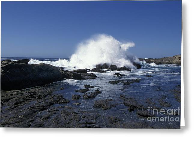 Point Lobos Seascape 2 Greeting Card
