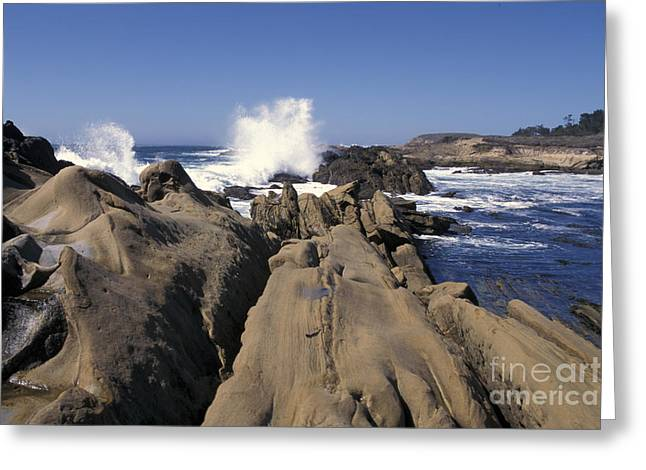 Point Lobos Seascape 3 Greeting Card by Stan and Anne Foster