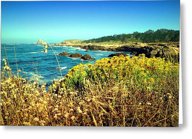 Point Lobos Shore In Bloom Greeting Card