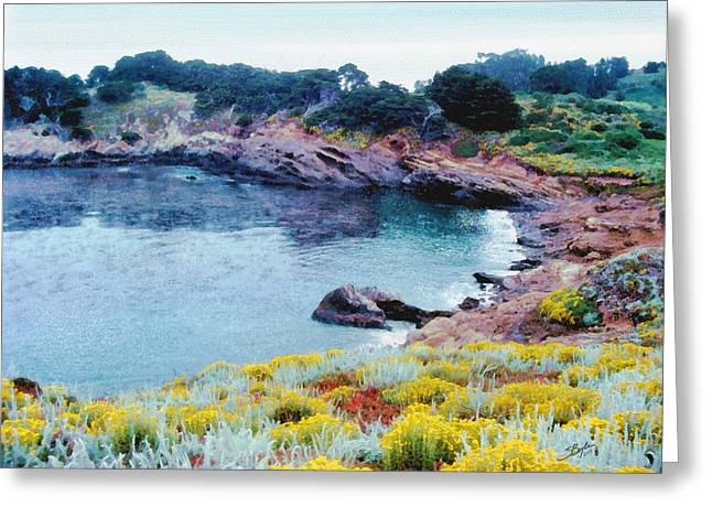 Point Lobos Digital Greeting Cards - Point Lobos Greeting Card by Stephen Boyle