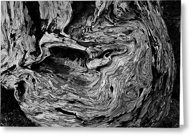 Point Lobos Vi Bw Greeting Card by David Gordon