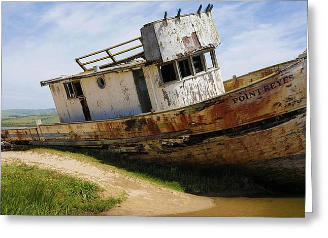 Point Reyes Abandoned Ship Greeting Card by Brian Maroevich