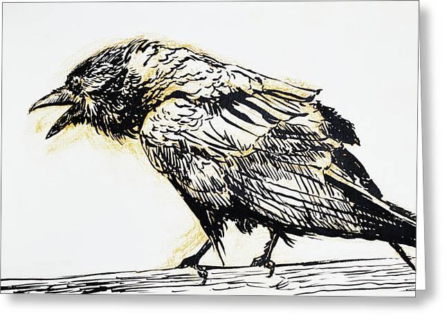 Point Reyes Raven Greeting Card