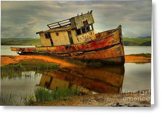 Point Reyes Shipwreck Greeting Card by Adam Jewell
