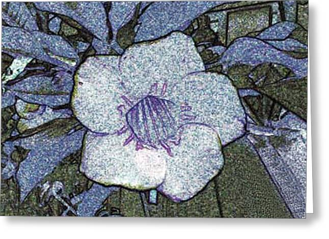 Greeting Card featuring the photograph Pointilized Flower by Merton Allen