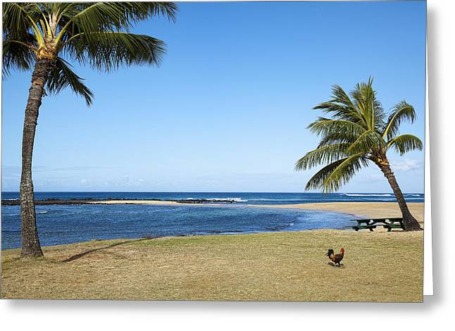 Poipu Beach Greeting Card by Kelley King