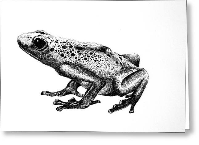 Poison Dart Frog Greeting Card by Rita Silva