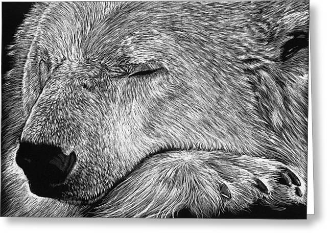 Polar Bear Asleep Greeting Card
