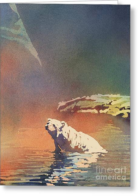 Polar Bear At Rest Greeting Card by Ryan Fox
