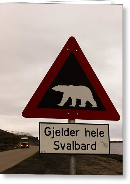 Best Sellers -  - Overcast Day Greeting Cards - Polar Bear Crossing Sign In Svalbard Greeting Card by Norbert Rosing