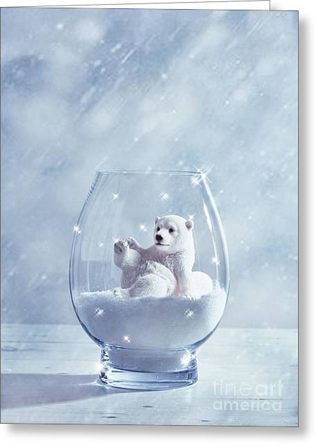 Polar Bear In Snow Globe Greeting Card by Amanda Elwell