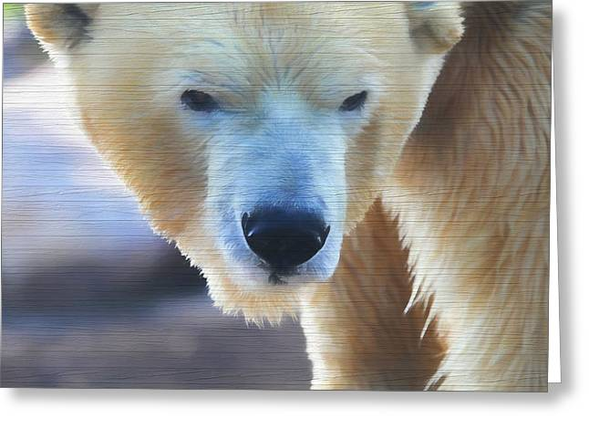 Polar Bear Wooden Texture Greeting Card by Dan Sproul