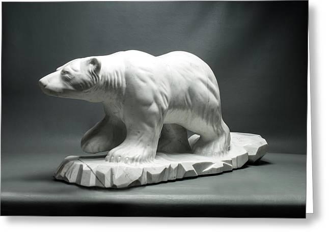 Polar King Greeting Card by Leslie Dycke