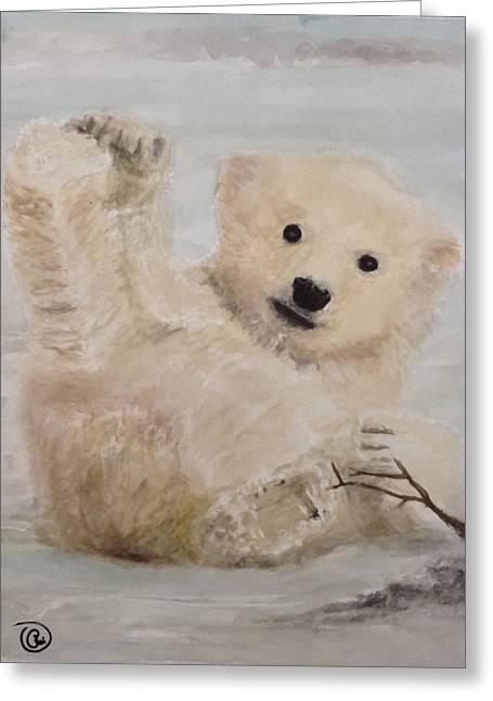 Polar Slide Greeting Card