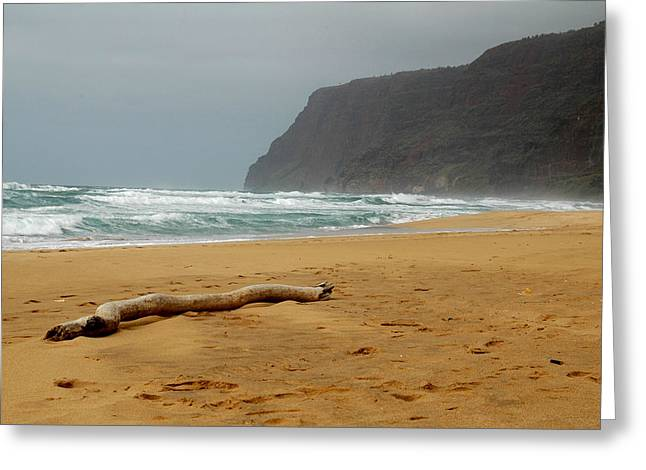 Polihale State Park Greeting Card by Kathy Schumann