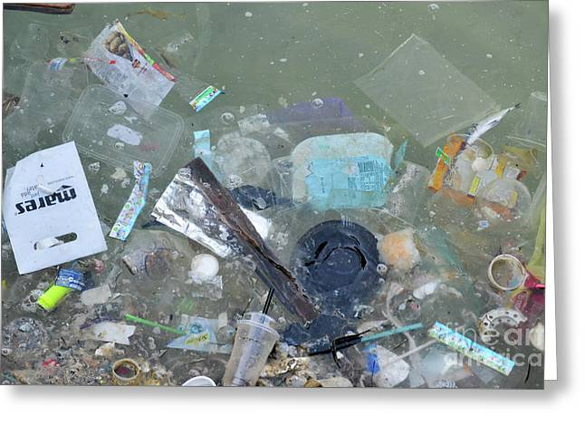 Polluted Dirty Water Greeting Card