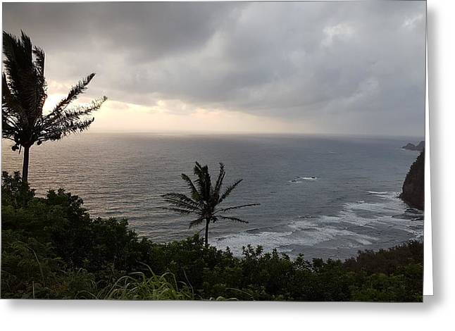 Pololu Valley, Hawaii Greeting Card by Lucas Boyd