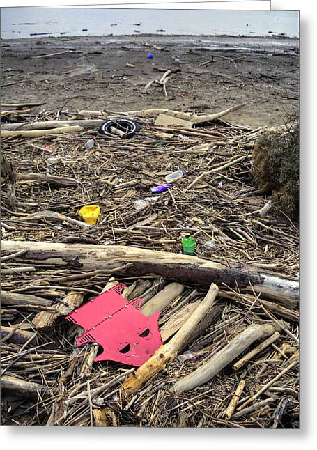 Polution Driftwood Greeting Card by Royal Photography