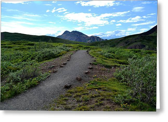 Polychrome Pass Trail, Denali Greeting Card by Zawhaus Photography