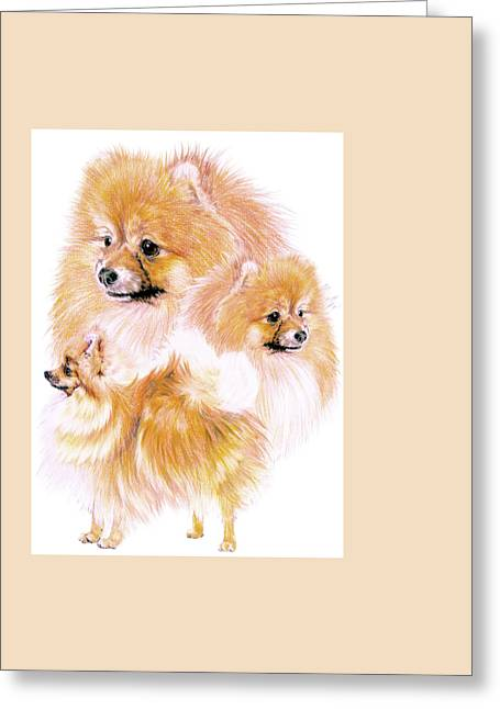 Toy Dog Greeting Cards - Pomeranian Greeting Card by Barbara Keith