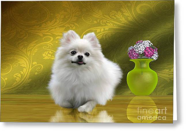 Pomeranian Dog Greeting Card by Corey Ford
