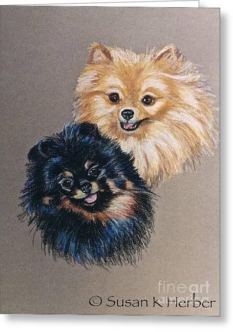 Pomeranian Pair Greeting Card by Susan Herber