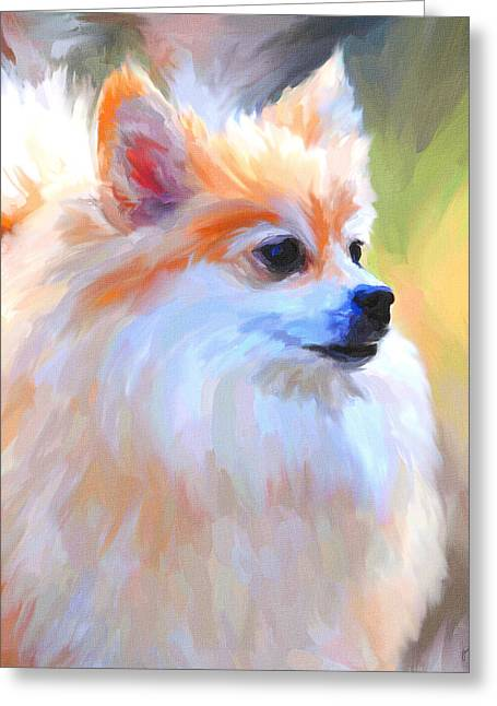 Pomeranian Portrait Greeting Card