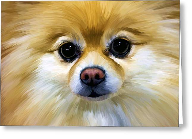 Pomeranian Greeting Card by Thanh Thuy Nguyen