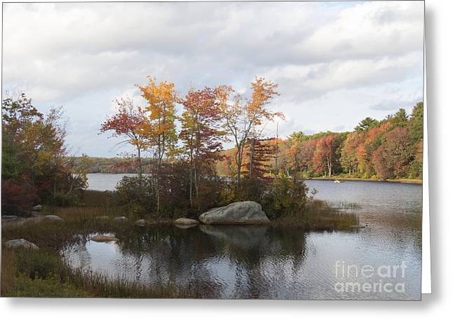 Ponaganset Autumn 2015 Greeting Card