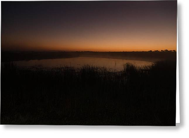 Pond And Cattails At Sunrise Greeting Card