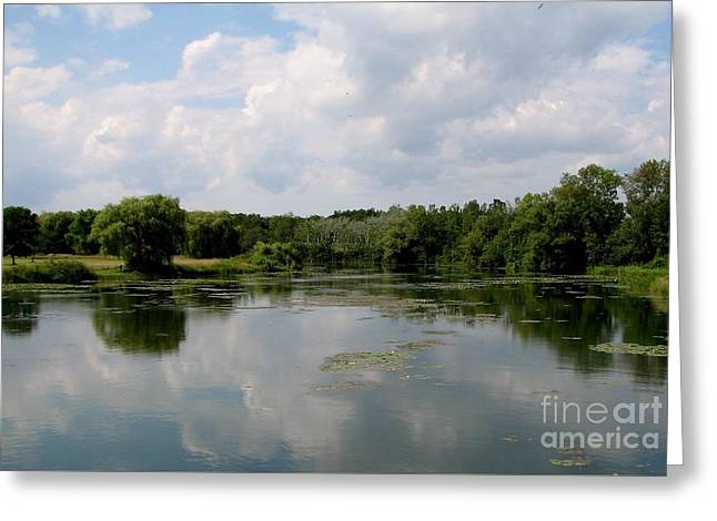 Pond At Beaver Island State Park In New York Greeting Card by Rose Santuci-Sofranko