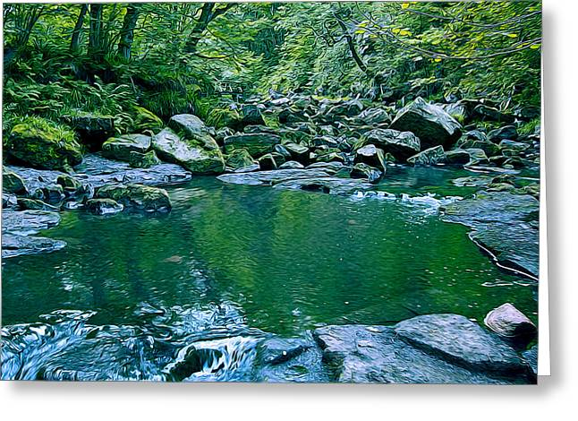 Pond In A Forest Greeting Card by Svetlana Sewell