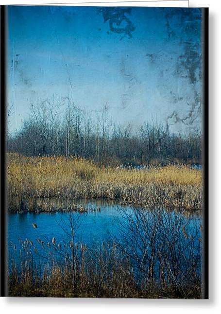 Pond In The Field Greeting Card by Michel Filion