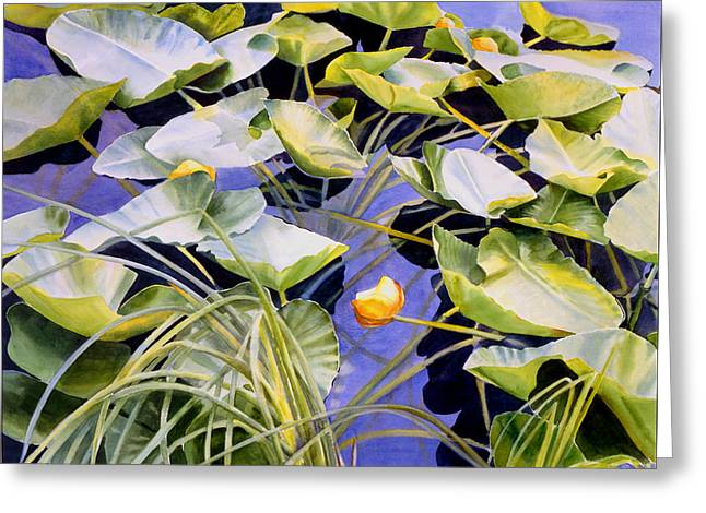 Pond Lilies Greeting Card