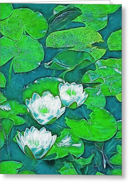 Pond Lily 2 Greeting Card by Pamela Cooper