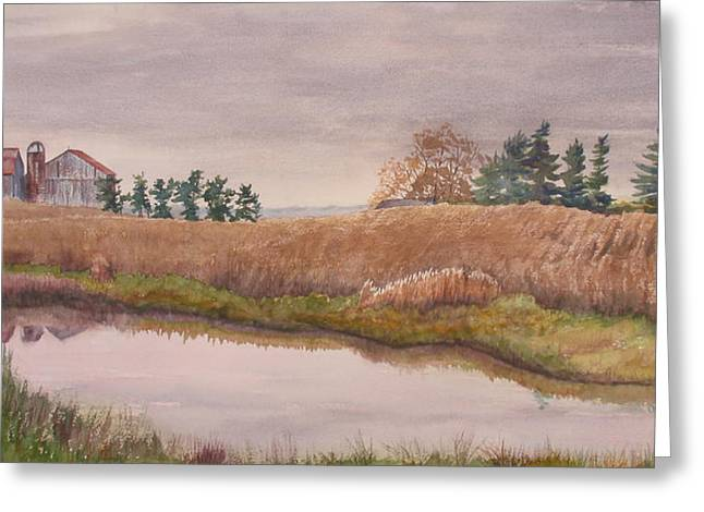 Pond Magic Greeting Card by Debbie Homewood