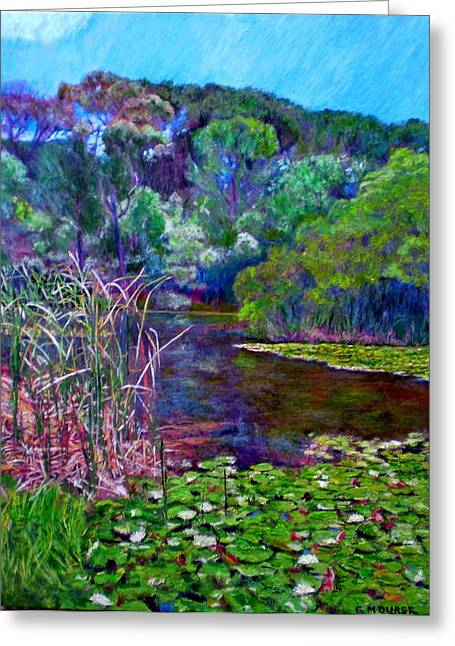 Pond Of Tranquility Greeting Card by Michael Durst