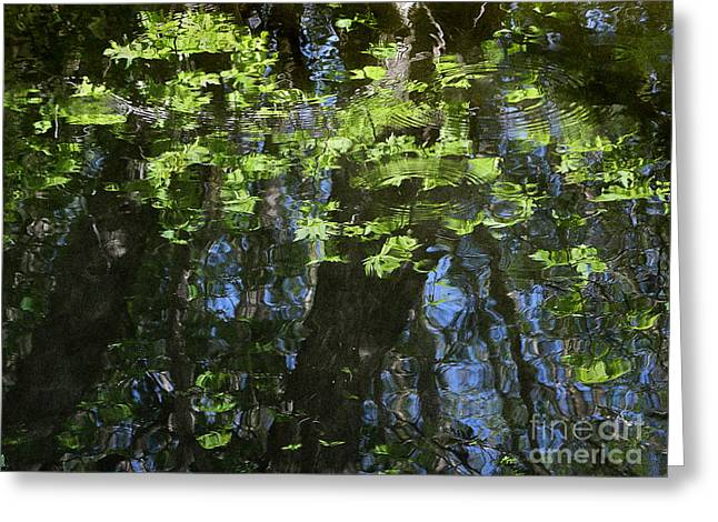 Stipple Greeting Cards - Pond Reflection 1 Greeting Card by Janeen Wassink Searles