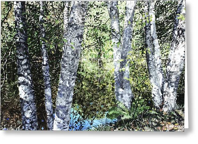 Pond Reflection Greeting Card by Perry Woodfin