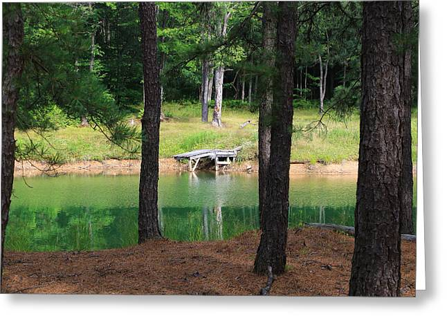 Pond Side Dock Greeting Card