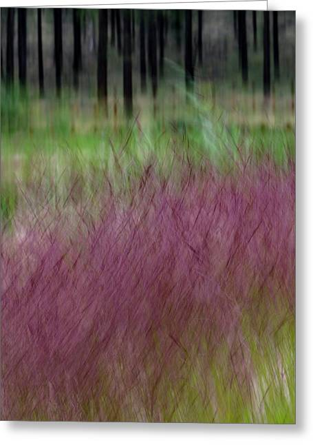 Ponderosa With Grass Greeting Card