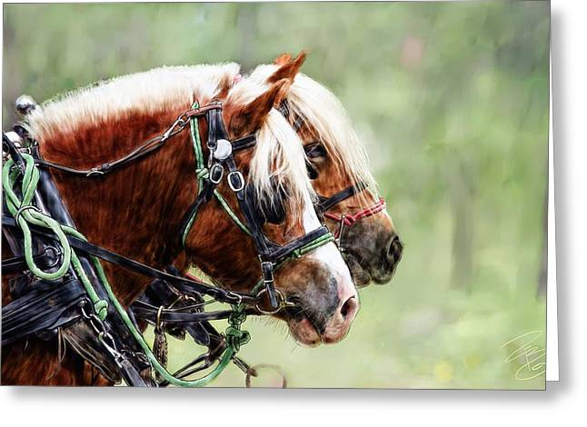 Ponies In Harness Greeting Card