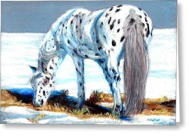 Pony At Winter Pasture Greeting Card by Angela Finney