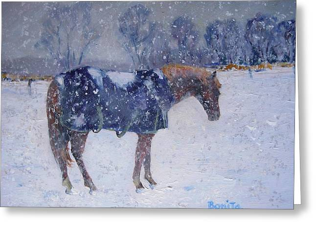 Pony In The Snow Greeting Card