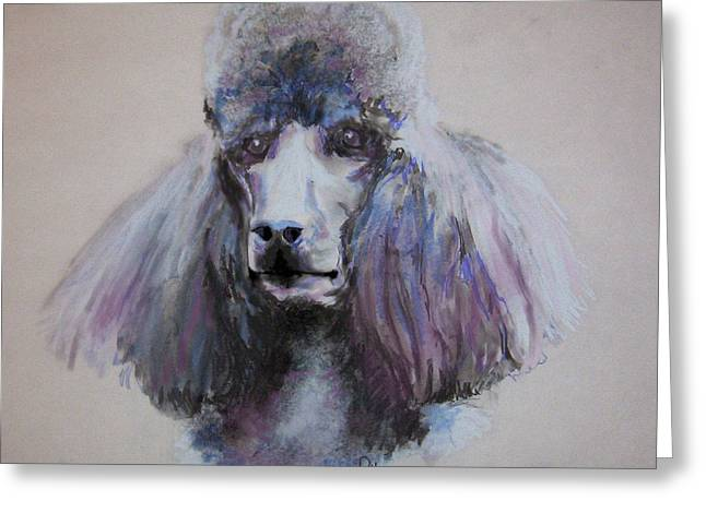 Poodle In Blue Greeting Card